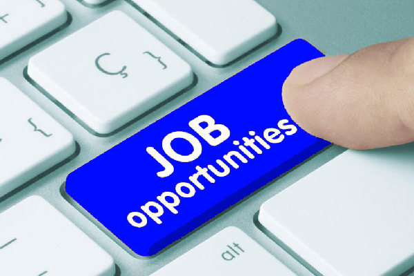 Job Vacancies on the Rise in Most Canadian Provinces