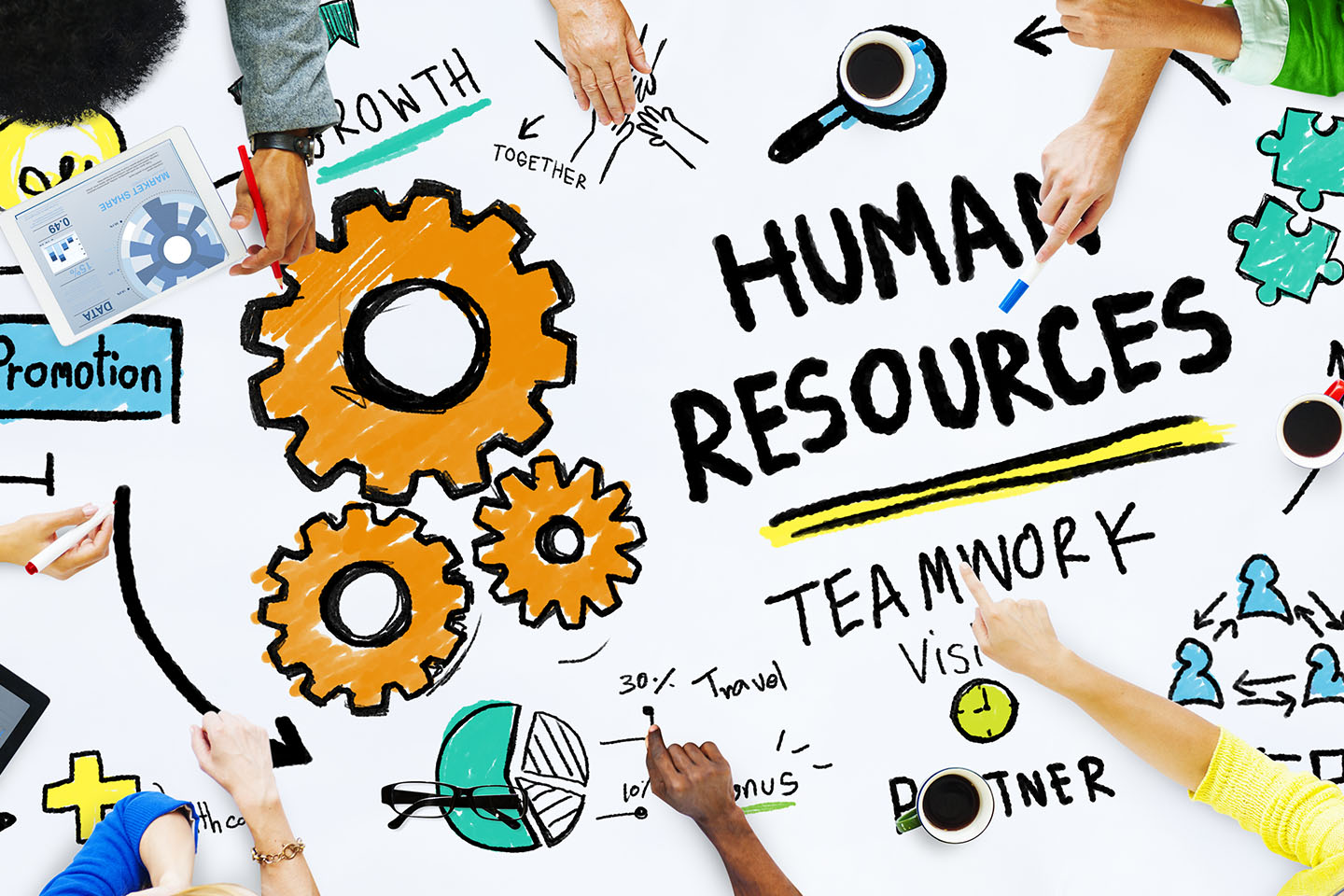 How Can I Improve my HR Department?